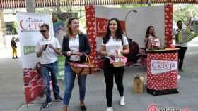 zamora portugal alfandega da fe fiesta cereza (3)