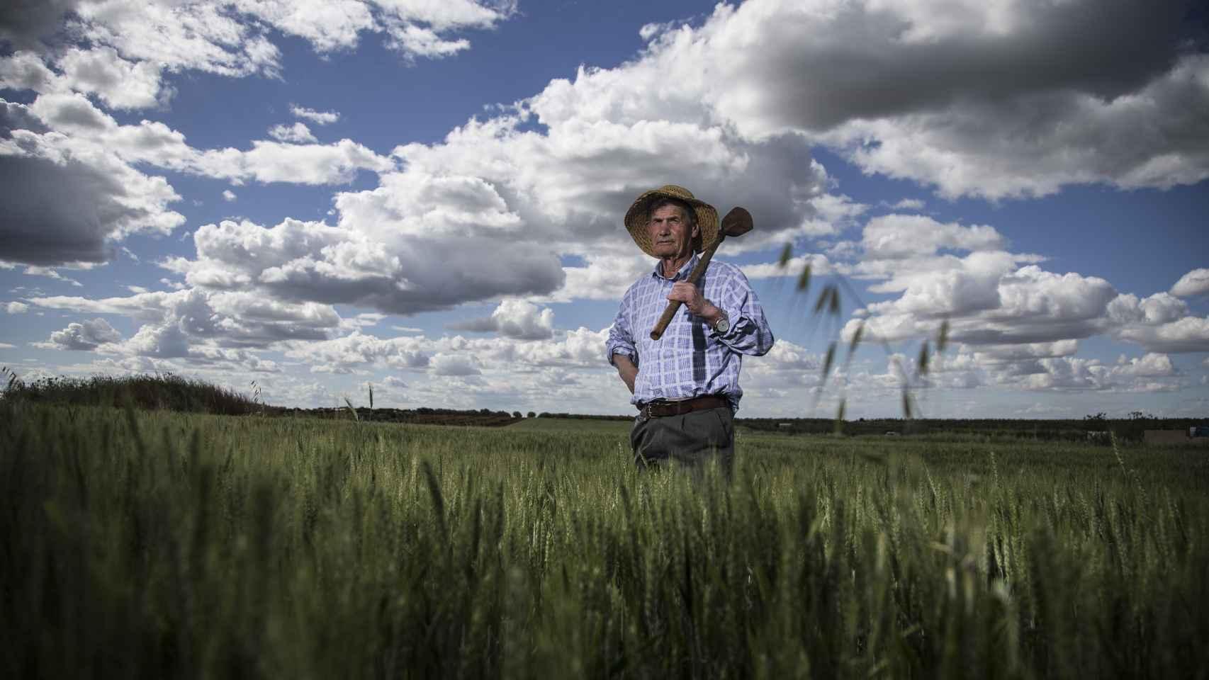 Robustiano García, labrador extremeño de 77 años, es fiel devoto de San Isidro. Foto Fernando Ruso