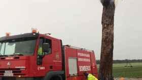 bomberos rayo arbol pedrajas 1