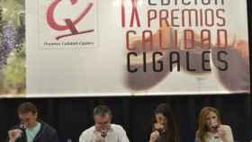 Valladolid-premios-calidad-cigales-vino-enoturismo