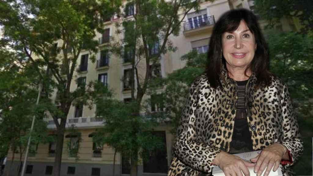 Carmen Martínez Bordiú frente a la fachada del edificio en un fotomontaje de Jaleos.
