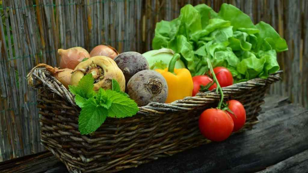 Los pesticidas mantienen sanas a las frutas y verduras, pero también pueden influir negativamente en nuestra salud.