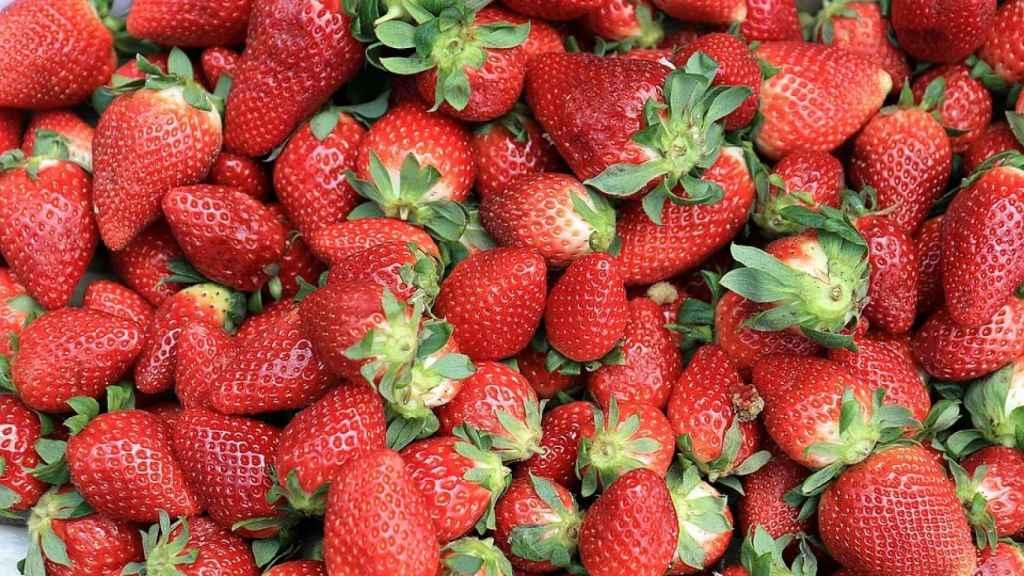 La fresa es la fruta con más pesticidas según el estudio de la EWG.