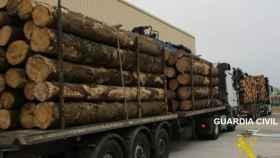 Burgos-camion-tronco-arboles-guardia-civil