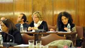 zamora pleno diputacion (4)