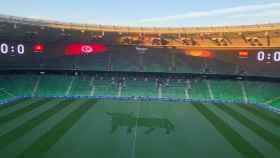 Estadio de Krasnodar.