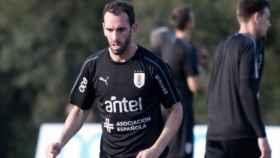 Diego Godín durante un entrenamiento con Uruguay. Foto: Twitter (@diegogodin)