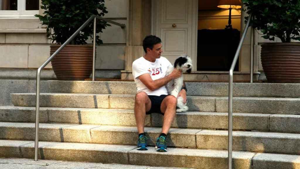 Pedro Sánchez posando con su perro este lunes.