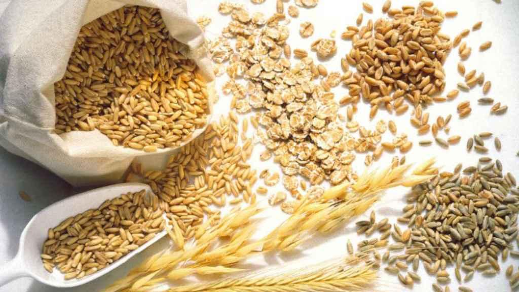 Alientos que son fuente de proteínas vegetales.