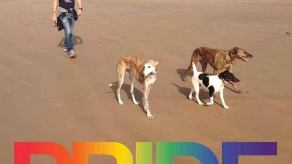 Paseando con sus perros por la playa.