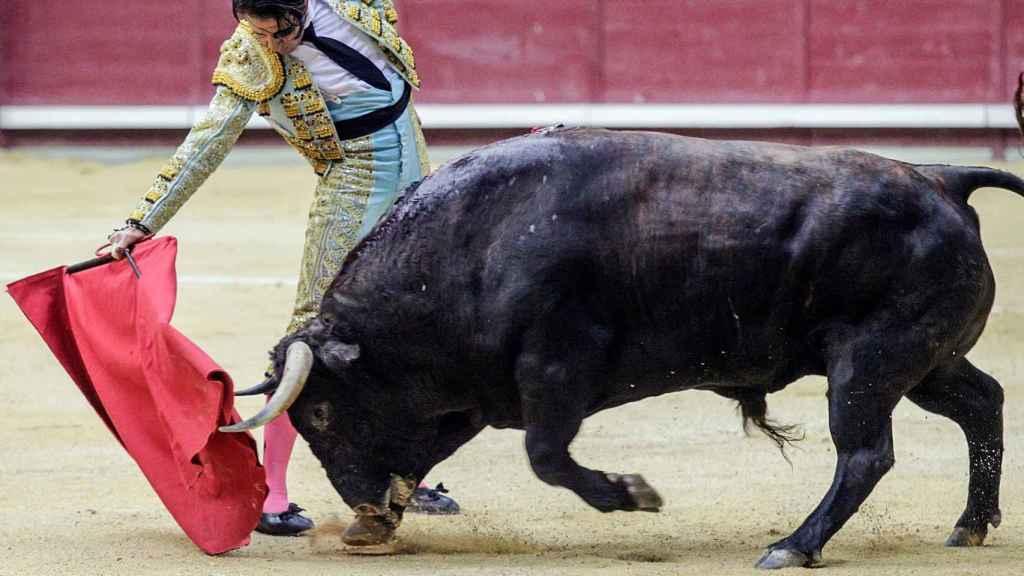 El torero Padilla sufre una dramática cogida en Arévalo