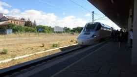zamora-tren-edades-hombre-toro-1-696x522