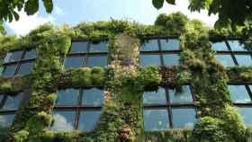 Jardín vertical en el Museo del muelle Branly