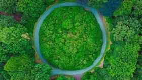 La agencia medioambiental de la ONU y Google crearán una plataforma abierta con la información sobre los ecosistemas de la Tierra.