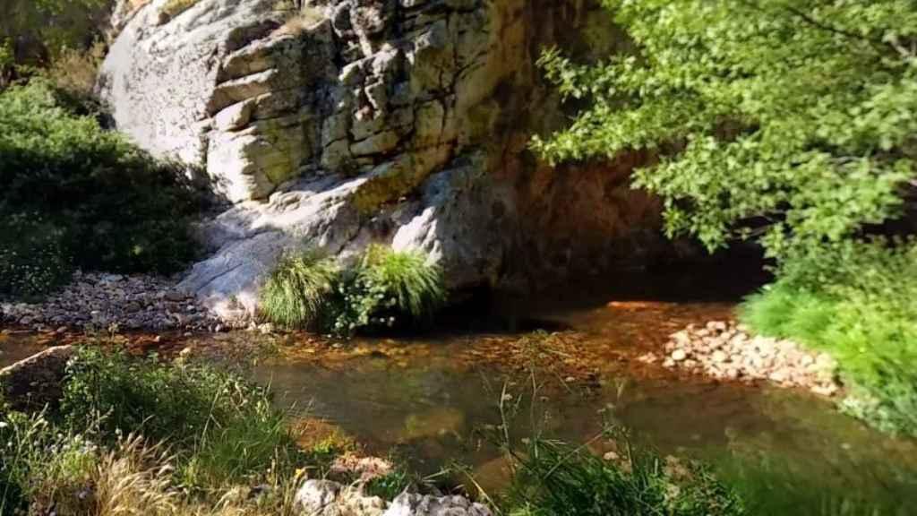 Imagen de las aguas del Almonte