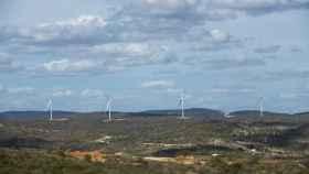Imagen del parque eólico de Paraiba en Brasil.