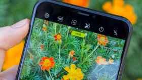 Por qué los ajustes de pantalla de tu Android son importantes