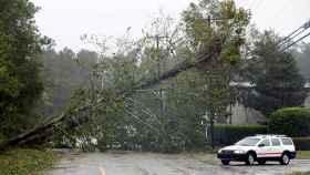 Árboles derribados por el huracán 'Florence' a su paso por  Wilmington, Carolina del Norte.