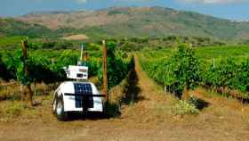 El prototipo de Vinescout ha realizado las primeras pruebas en un viñedo portugués.