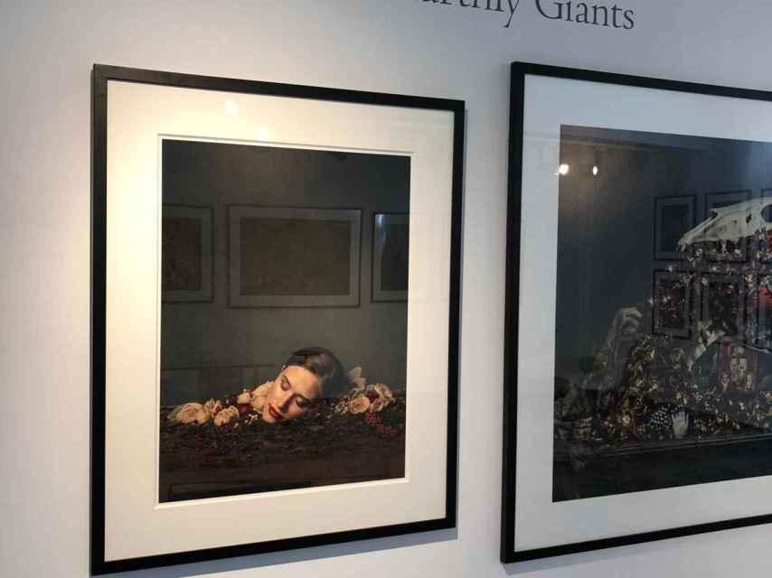 Earthly Giants