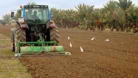 actividad agraria