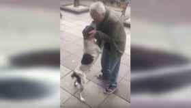 El emotivo reencuentro de un perro con su dueño tras tres años perdido