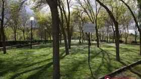zamora perros parque de olivares
