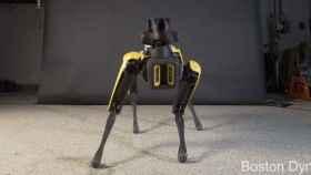 Spot, el perro robot, haciendo twerking.