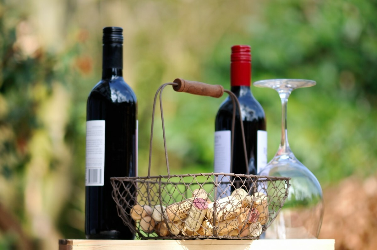 wine_beverages_drink_alcohol_glass_red_liquid_wine_glass-1029604