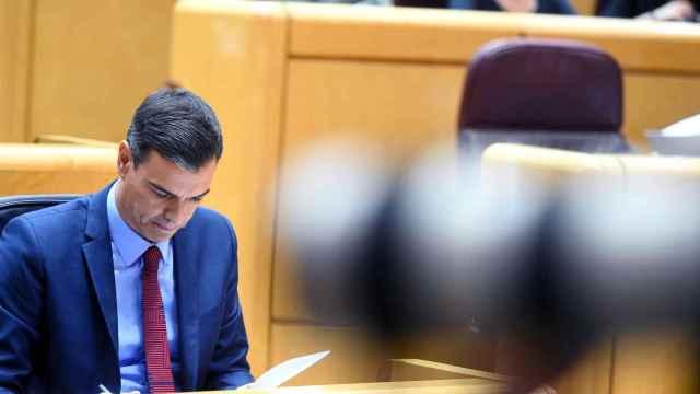 Pedro Sánchez, presidente del Gobierno, en la bancada azul del Senado.