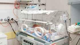 Perdió los dos testículos en los cuatro primeros meses desde su nacimiento.