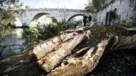 Árboles caídos a causa del temporal. En la imagen, junto al Tíber, en Roma.