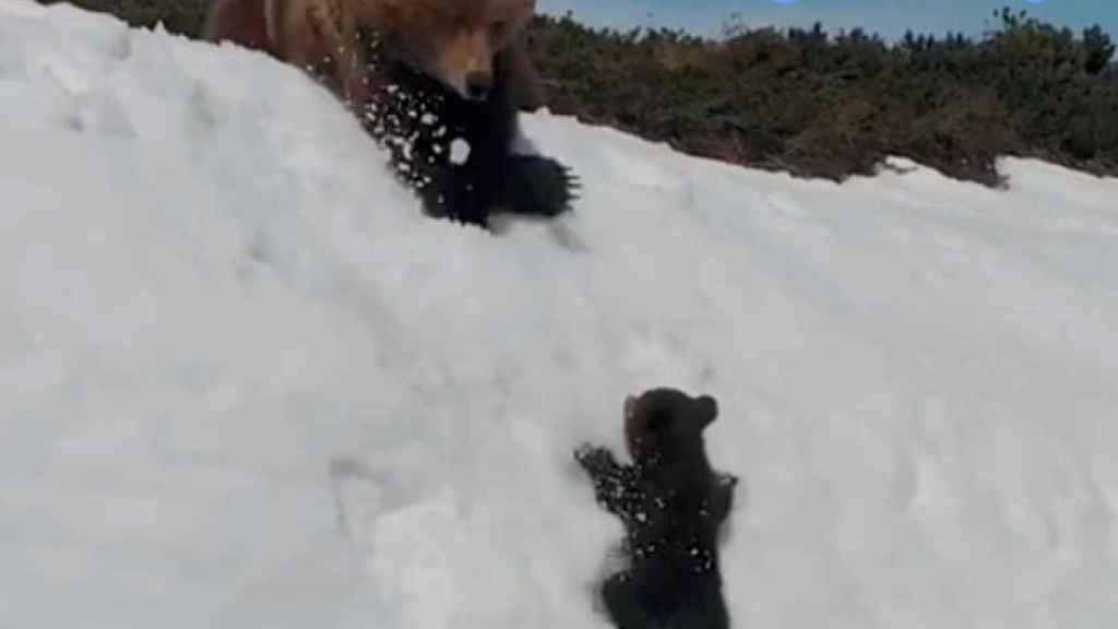 Una de las capturas del vídeo que sacó el tuitero