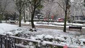 nevada nieve valladolid febrero 8
