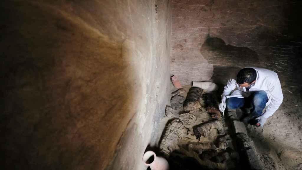 Un arqueólogo trabaja en la tumba donde se han encontrado las momias de los gatos.