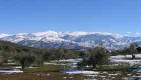 Sierra Nevada, donde se llevó a cabo el experimento.