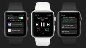Spotify Watch