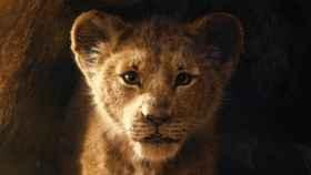 rey leon 1