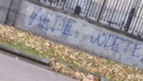 Pintadas contrarias a la asociación que el alumno constitucionalista impulsaba en la UPV.