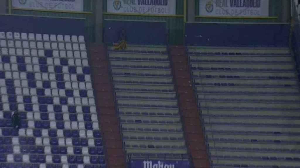 El solitario aficionado del Mallorca.