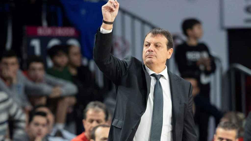 Ergin Ataman, entrenador del Anadolu Efes