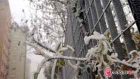 zamora frio cencellada (2)