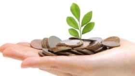 Financiación verde: el sector bancario quiere redimirse