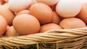 huevos-cesto-585