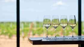 10 cosas sobre vino español que tal vez no sepas