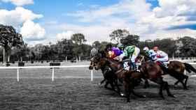 carrera_caballos