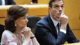 Pedro Sánchez comparece en sesión plenaria del Senado