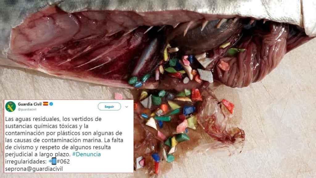 Uno de los tuits de seguridad alimentaria del SEPRONA / @guardiacivil