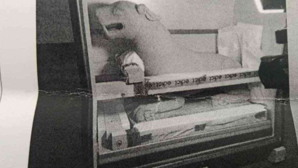 Imagen de una de las piezas intervenidas en la Operación Leona.