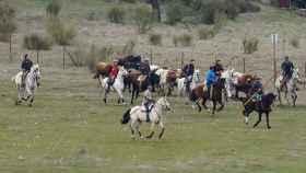 encierro caballo ciudad rodrigo 6